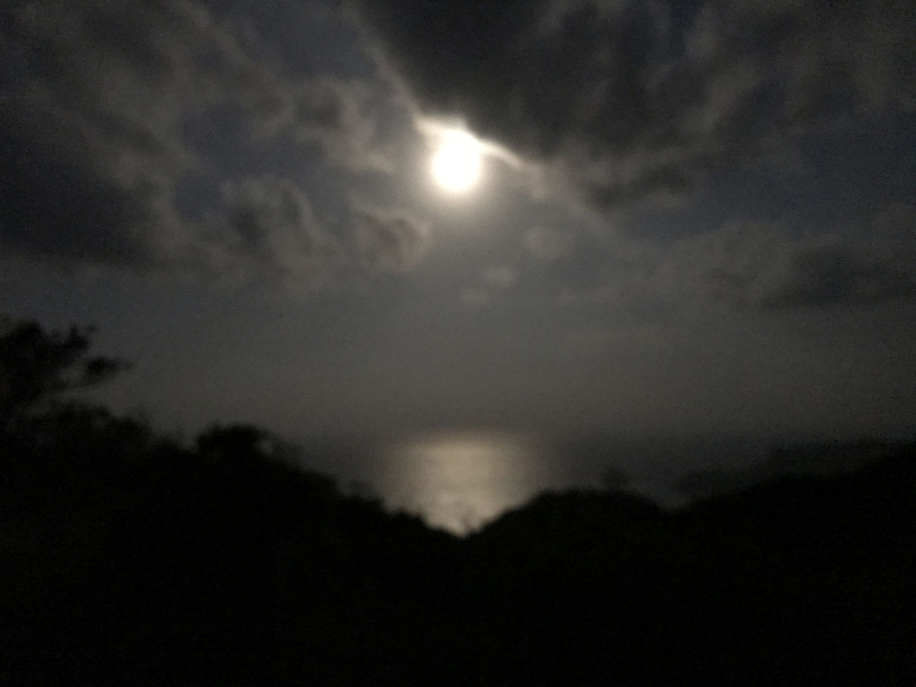 撮影:淺井聖 iPhone 7(f1.8, 1/4)